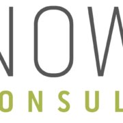Notion Consulting LOGO